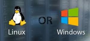 Chọn hosting Linux hay Windows.